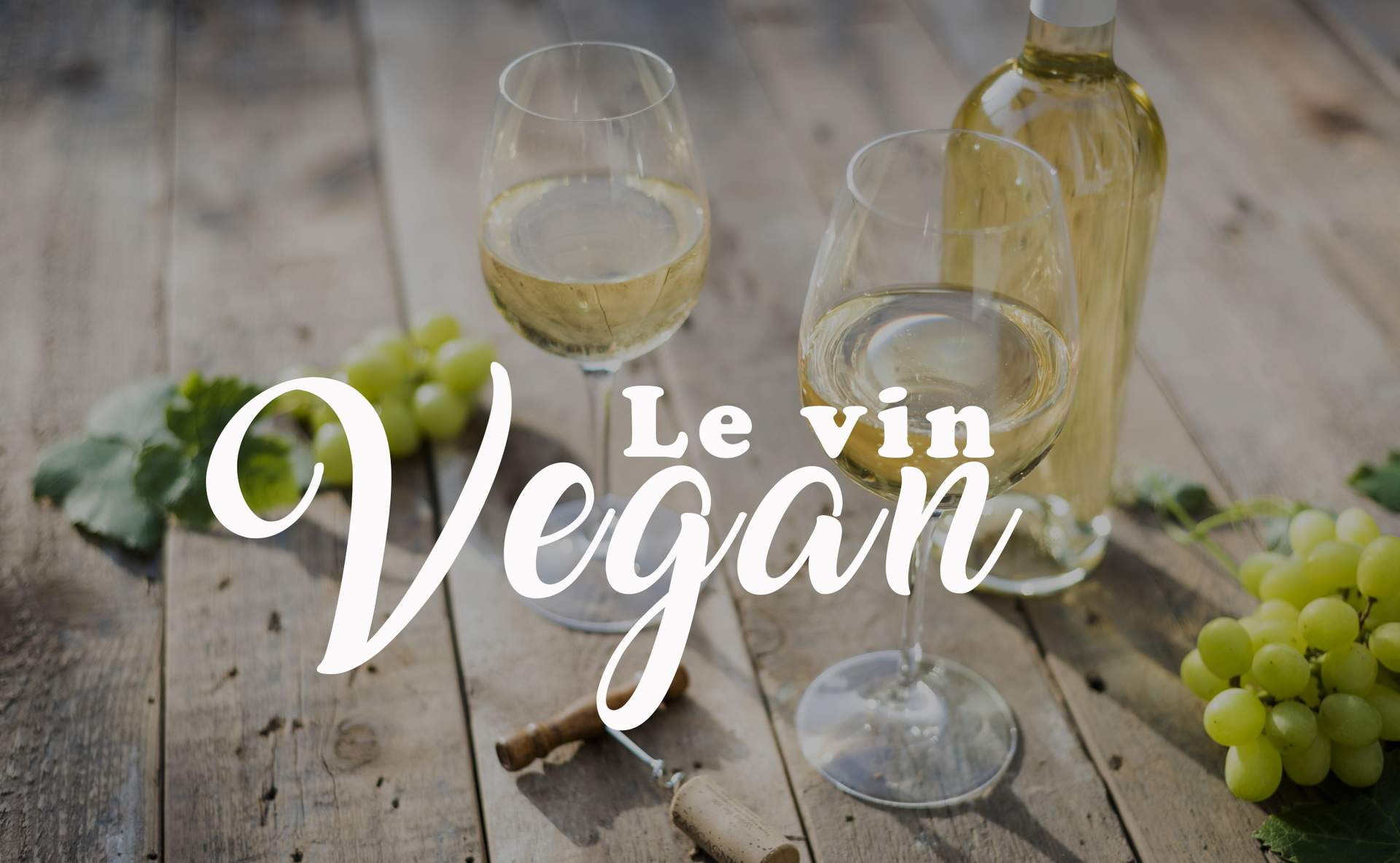 Le vin vegan : explications